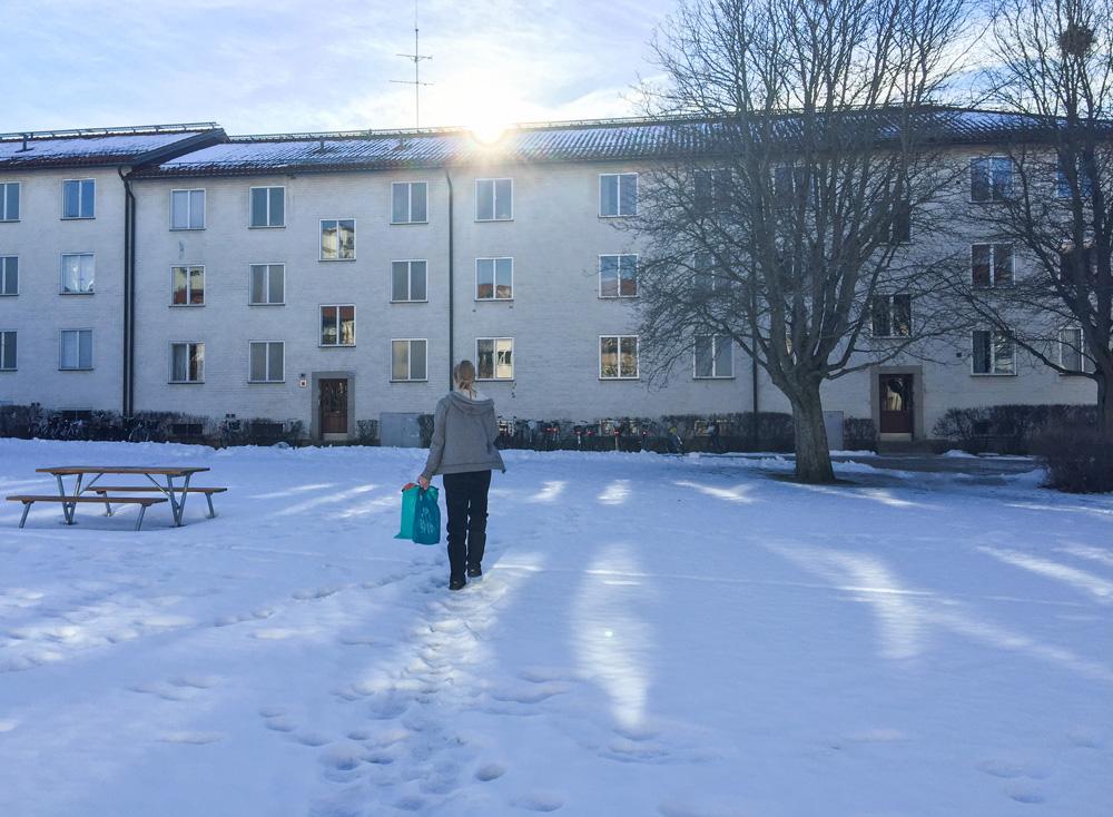 landry-snow