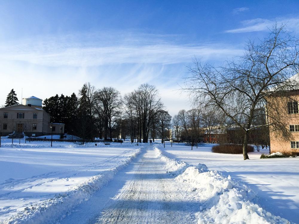 snow-park-uppsala