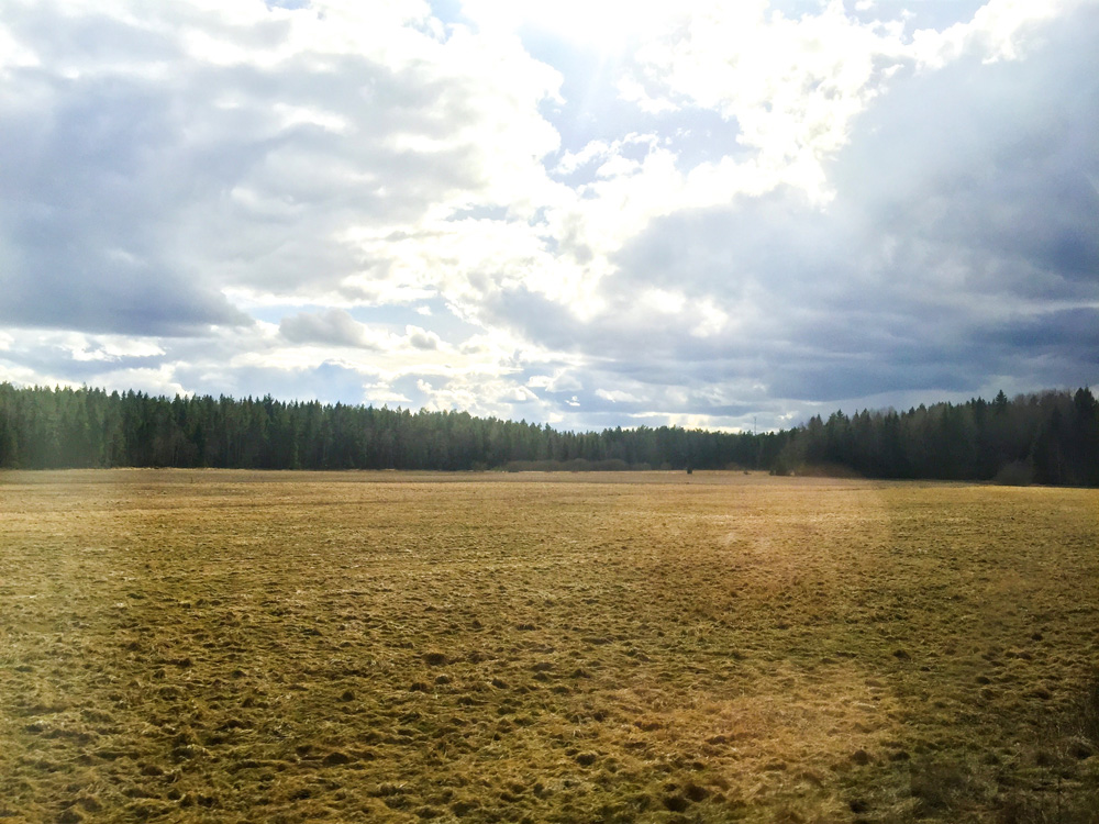 sweden-countryside