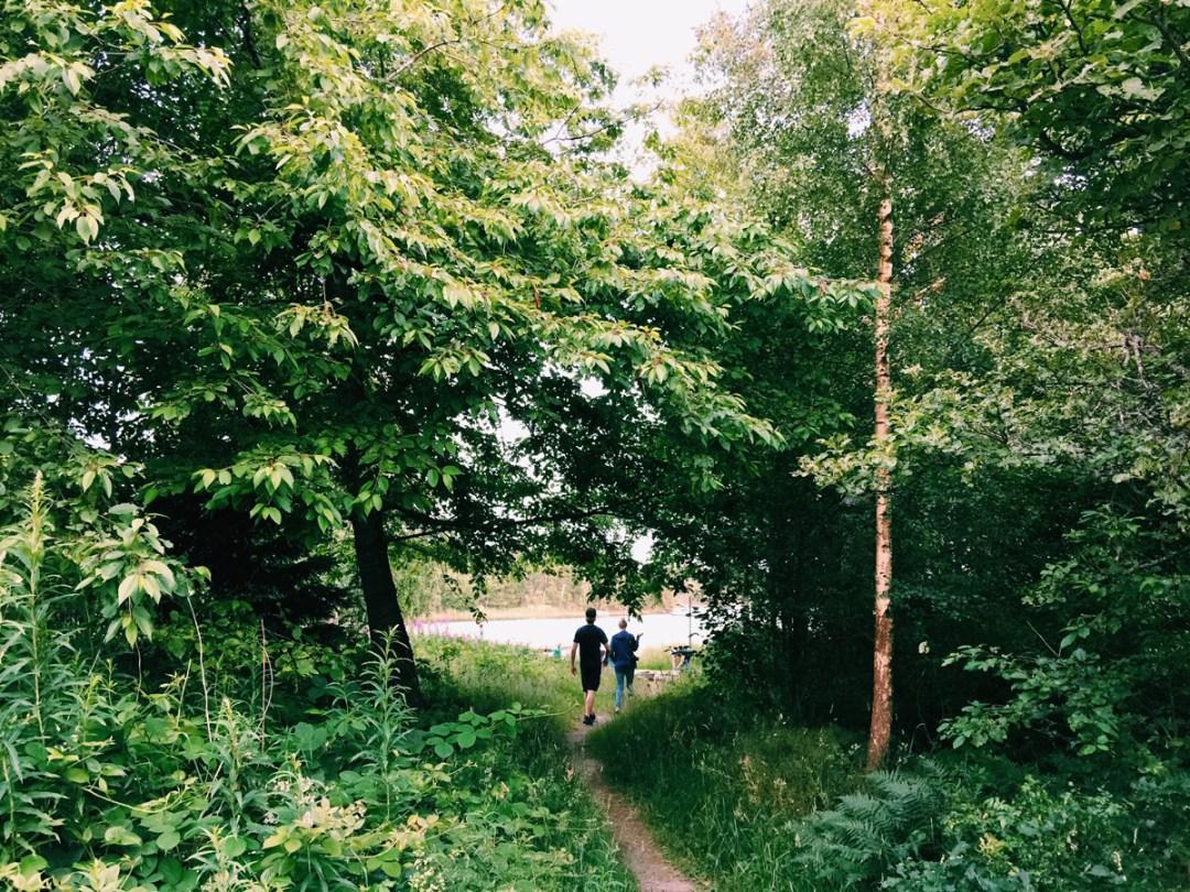 campfirde-trees-skeppsgarden