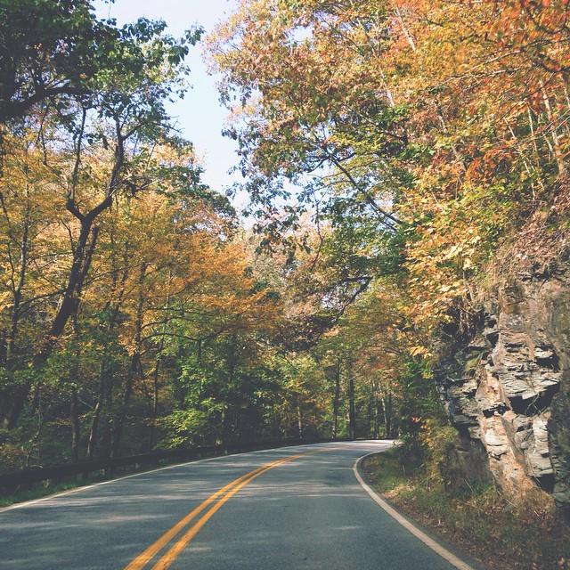 mountain road autumn