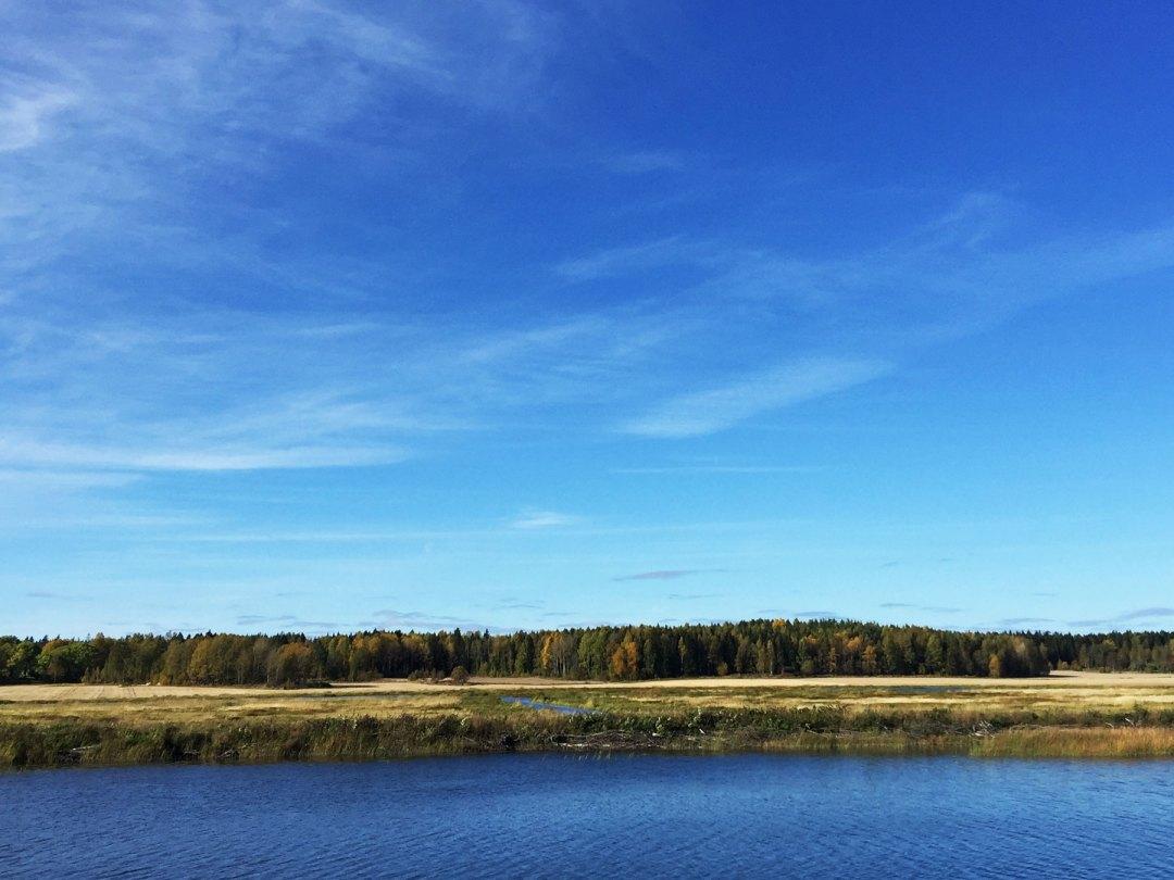autumn-water-surahammar-life-coach