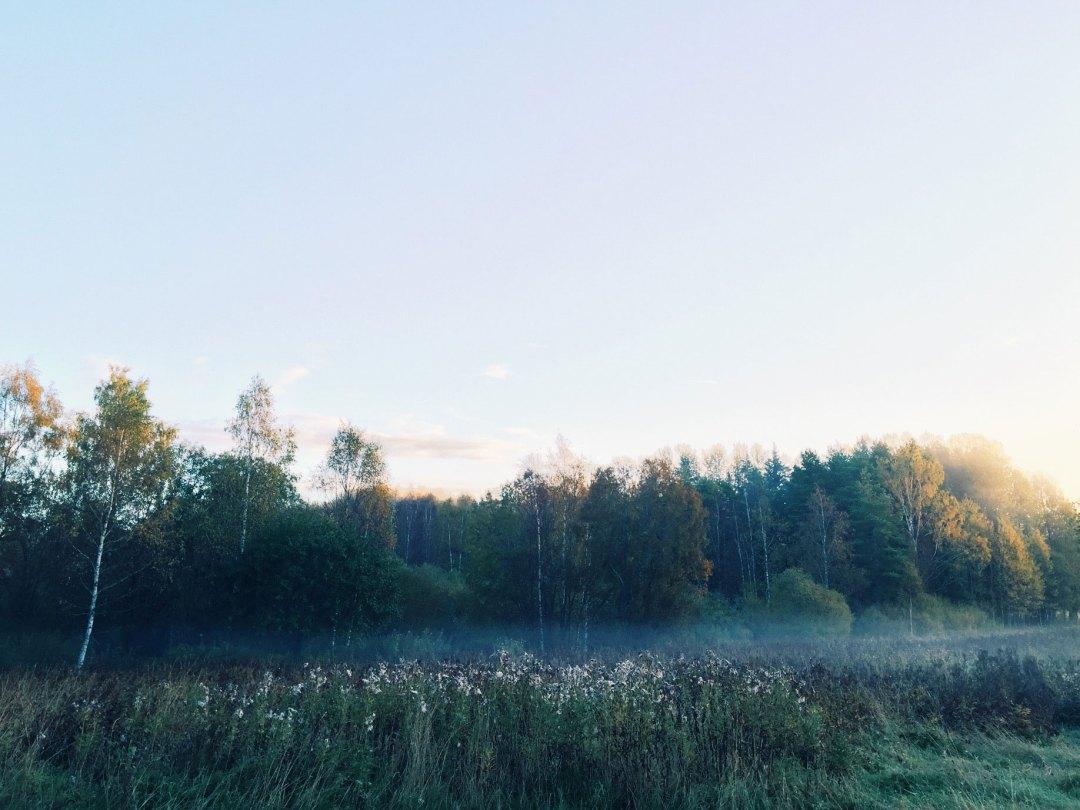morning-fog-surahammar-life-coach
