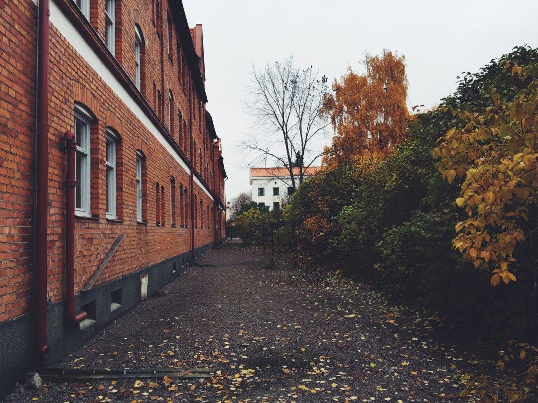 autumn-uppsala