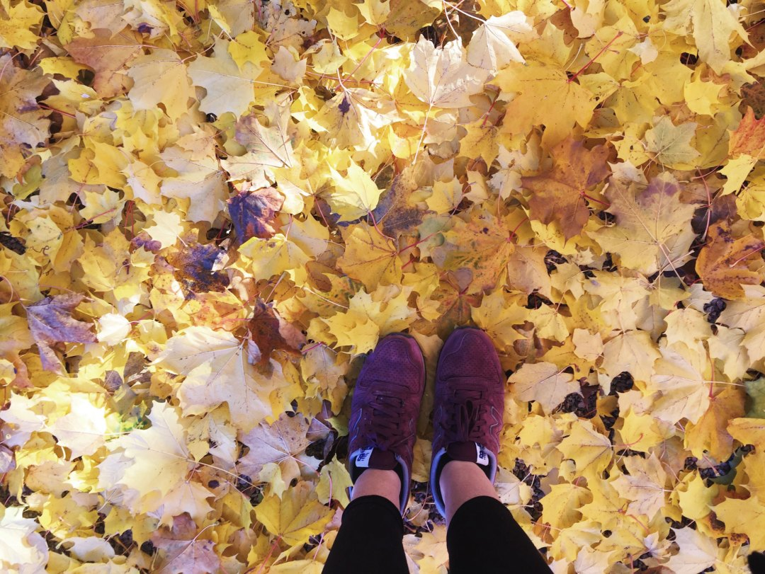 leaves-shoes-me
