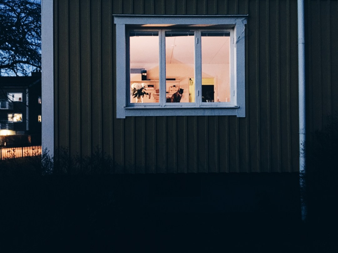 home window zola