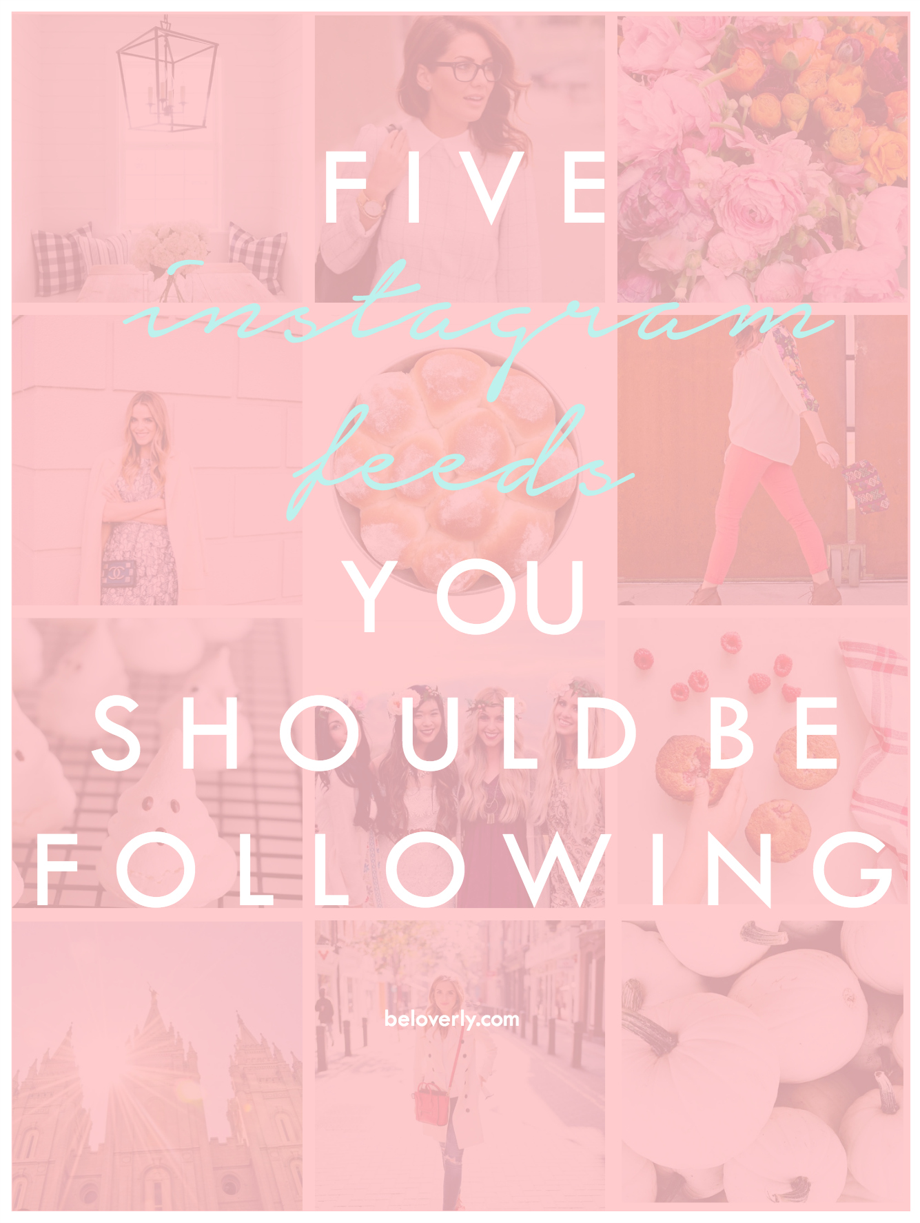 fiveinstagramfeedsyoushouldbefollowing