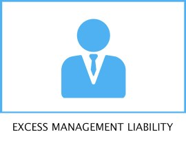EXCESS MANAGEMENT LIBILITY T