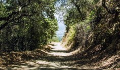 The best hiking trails in LA can sometimes be found outside of the city like in Glendale