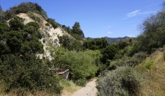 Some of the best hiking in LA can be found on the Temescal Canyon trails