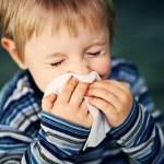 Um lar livre de alergias para seu filho