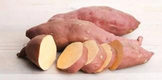 Benefícios da Batata Yacon! – Para que Serve a Batata Yacon?