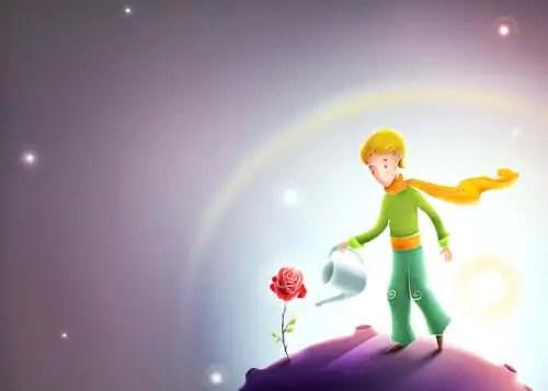 Outras lições de O Pequeno Príncipe