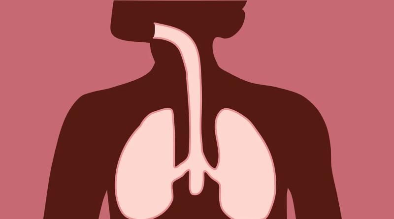 Medidas para aumentar a imunidade do sistema respiratório