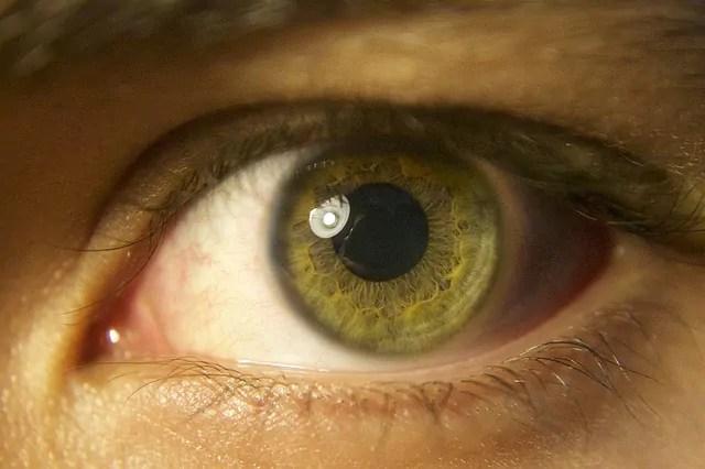 O novo coronavírus a lesões na retina