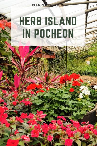 plant garden pocheon