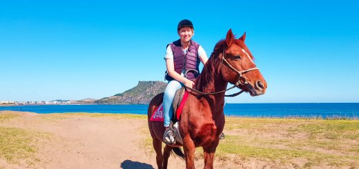 Horse Riding In Jeju