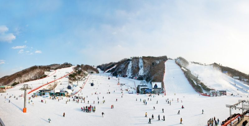 vivaldi park ski world South Korea