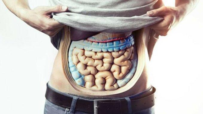 Omega-3 Benefits Digestion