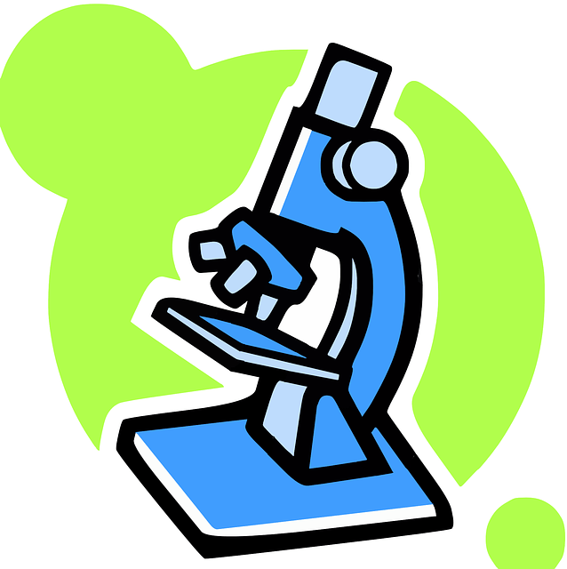 Ficha de Trabalho – O Microscópio (3) – Soluções