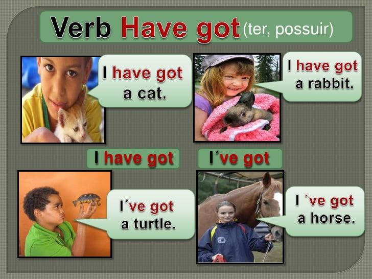 Verb Have Got
