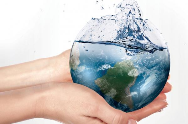 Importância da água para os seres vivos