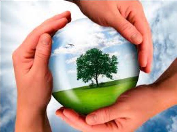 Ficha de Trabalho – Ciência geológica e sustentabilidade da vida na Terra (2) – Soluções