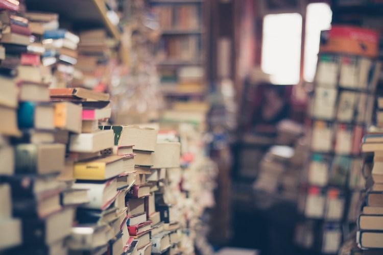 Brasileiro não gosta de ler: um mito transponível