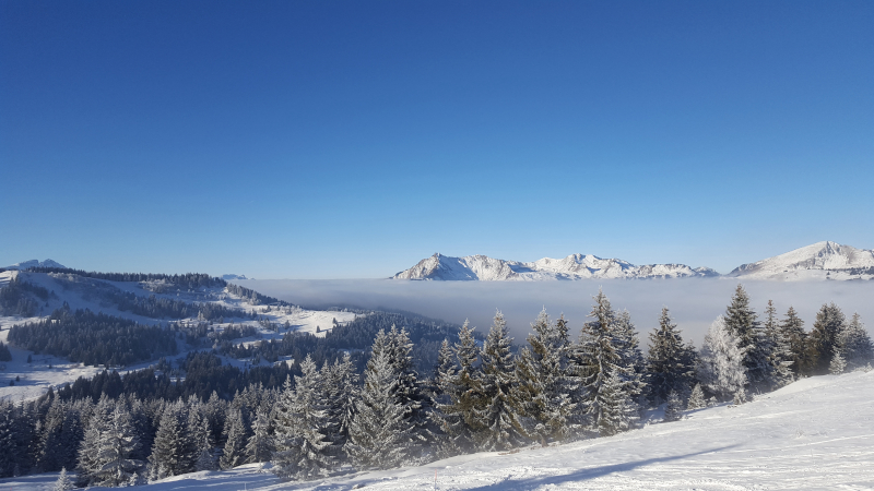 Bemymajoradventure-blog-voyage-les-gets-montagne-ranfolly