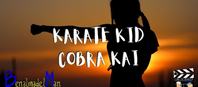 karate kid cobra kai blog