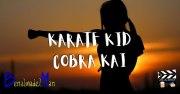 Karate kid y Cobra kai