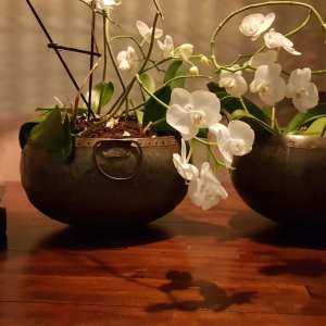 oude ijzeren waterpot met ringen