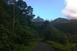 ®Benoit-CARPENTIER-Tahiti-Trip_4©BCarpentier