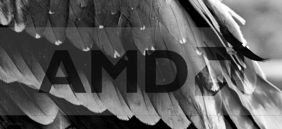 Las APU Avian expanden el roadmap de AMD hasta 2019