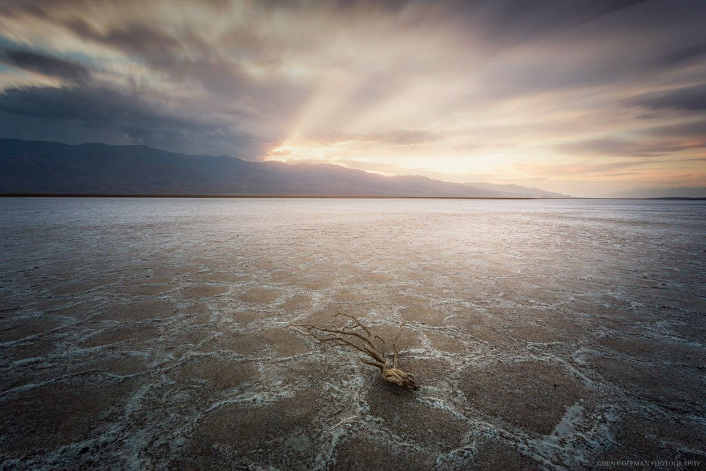 A denuded branch sits on the salt flats of Badwater Basin, Death Valley National Park.