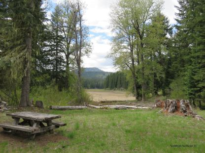 The meadow that has replaced Fish Lake