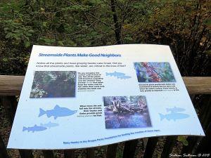 MetoliusPreserve Fish sign
