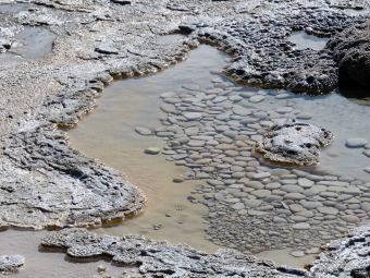 Pebbles Yellowstone NPk