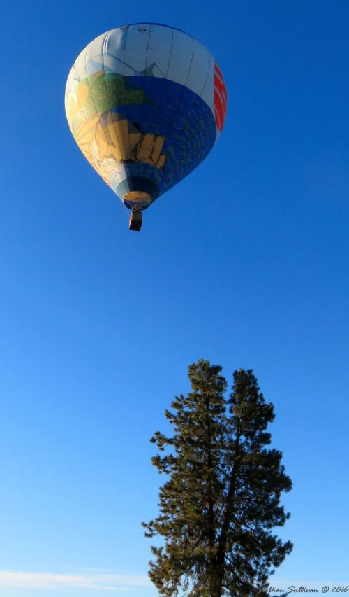 Art Aloft balloon in Bend, OR 23 July 2016