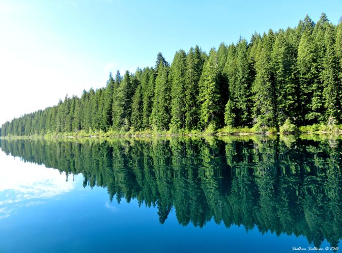 Clear Lake Reflections, Linn County, Oregon