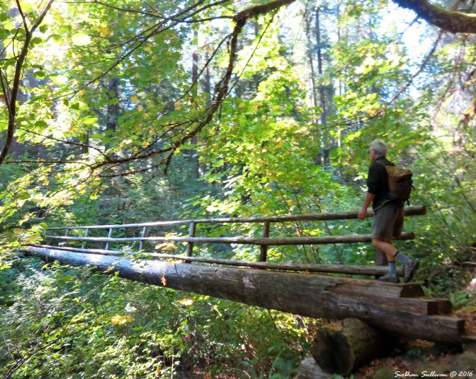 McKenzie River trail footbridge 15Sept2016