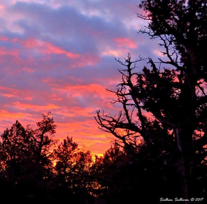 Dense cloud sunset, Oregon 18March2016
