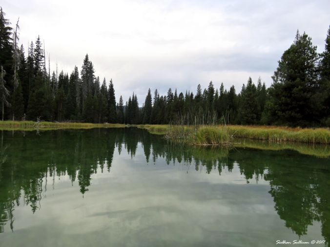 Origin of Deschutes River, Little Lava Lake, Oregon 28Sept2017