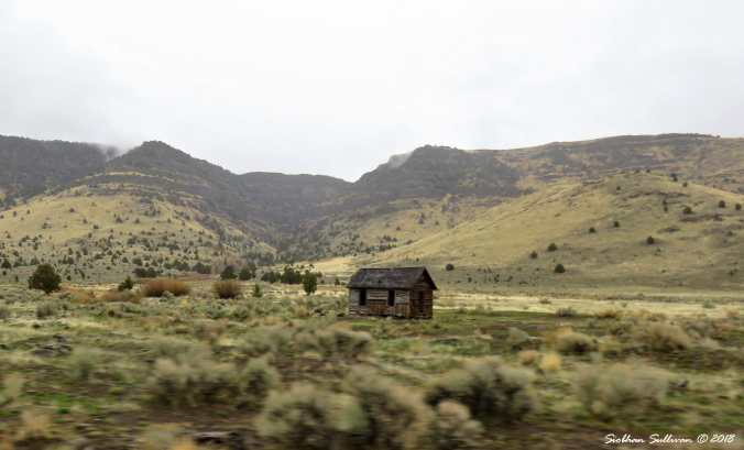 Steens mountain tour, old cabin eastern Oregon 6April2018