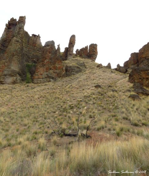 The palisades at Clarno Palisades 15May2018