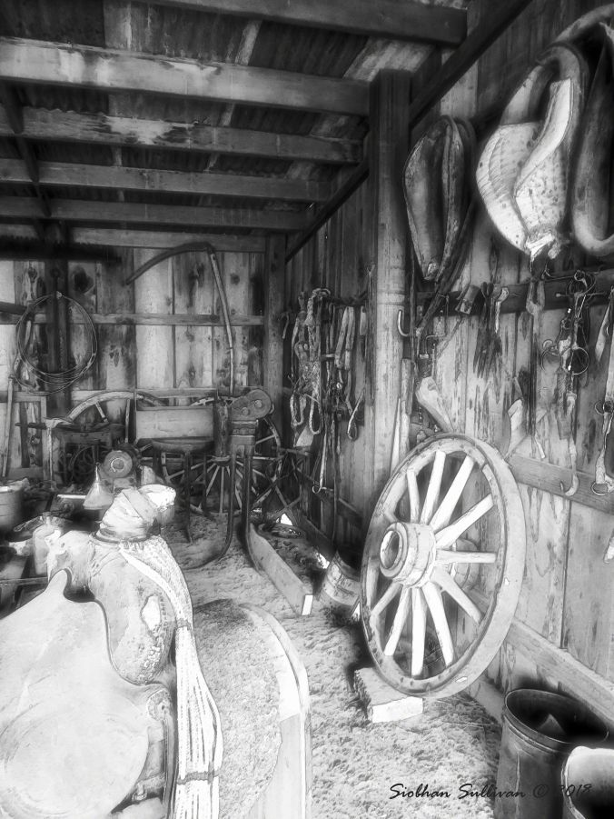 Blacksmith's Shop Fort Rock, OR 20May2015