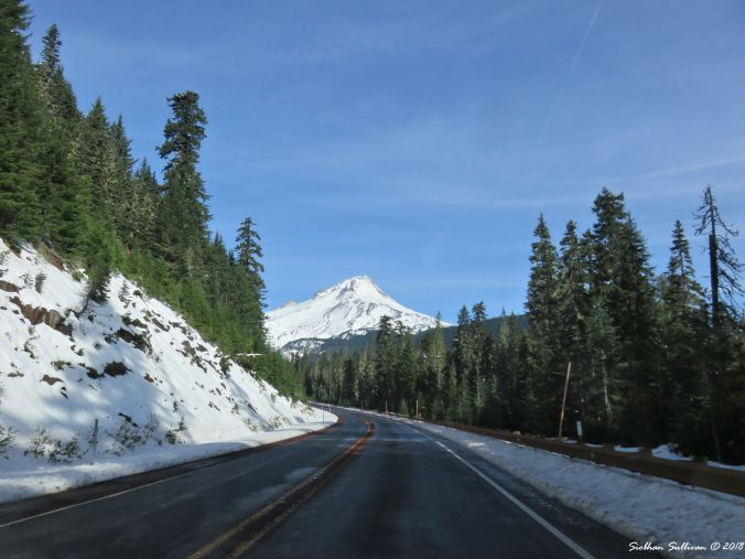 Viewpoints of Oregon, the view of Mt. Hood from Highway 26 14October2017