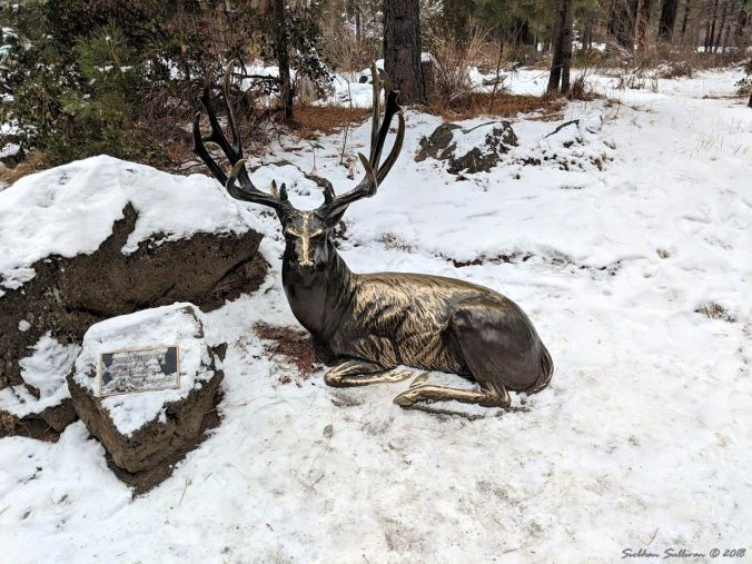 Seasons Deer Sculpture in the snow 5December2018
