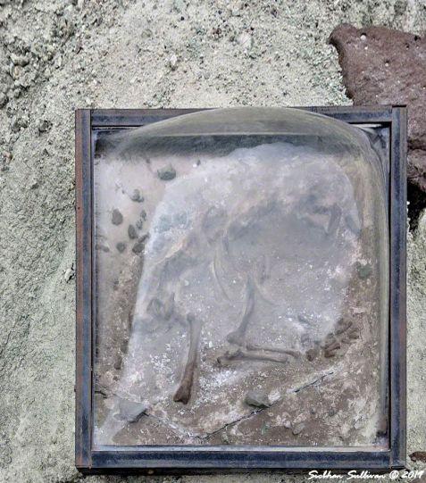 Blue Basin hike, John Day Fossil Beds National Monument, Oregon 26October2018