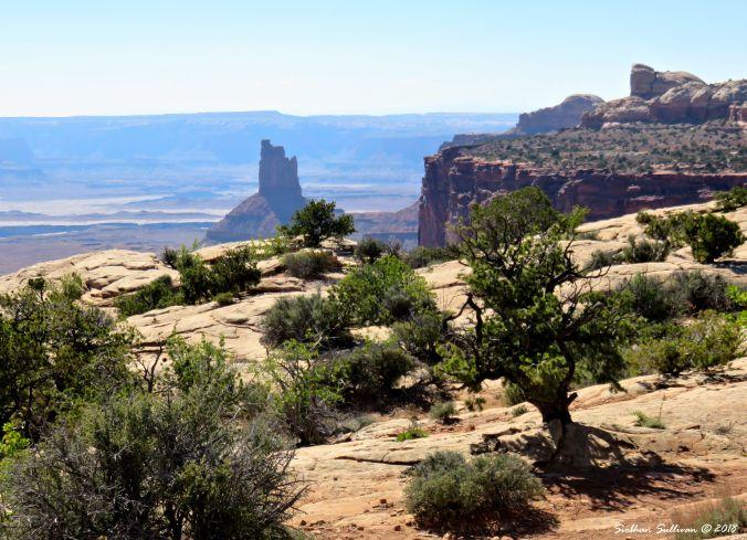 National Park Travels - Canyonlands, Utah  4May2017
